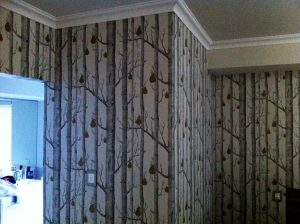 Wallpaper Installation Specialists - Commercial Painting